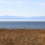 View of Juan de Fuca Strait and the Olympic Mountains beyond