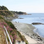 Secluded beaches and rocky shoreline are just a short distance from Nairne House By-the-Sea B&B