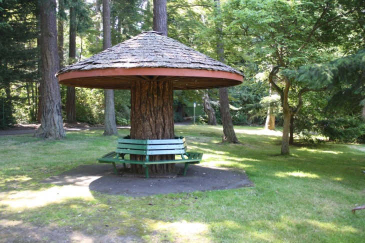 The mushroom seat in Beacon Hill Park