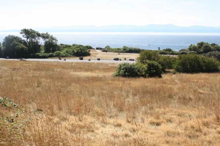 The Straits of Juan de Fuca and the Olympic Mountains from Beacon Hill, in Beacon Hill Park