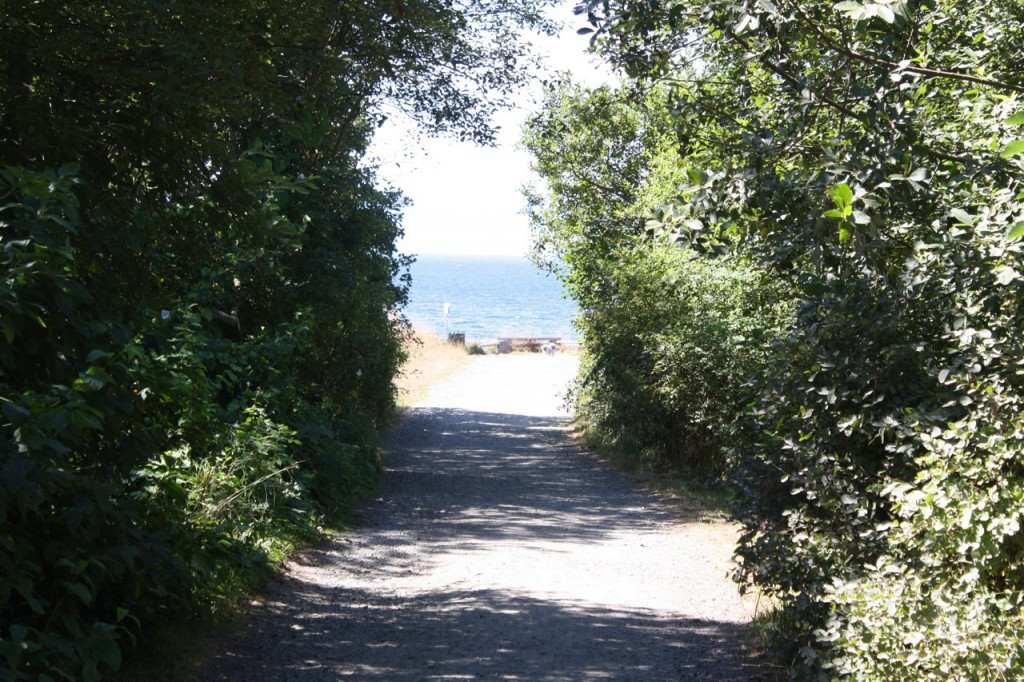 One of the pathways to the beach and the sea-side walkway